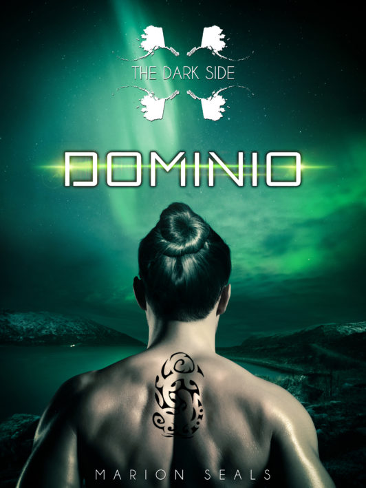 dominio-the-dark-side-serie-cover-marion-seals-author