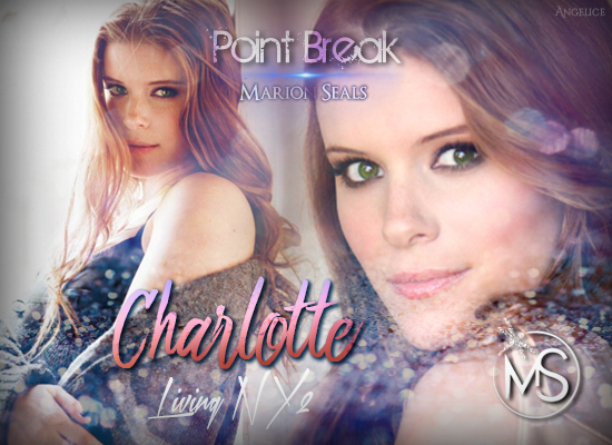 point-break-living-ny-serie-charlotte-marion-seals-author