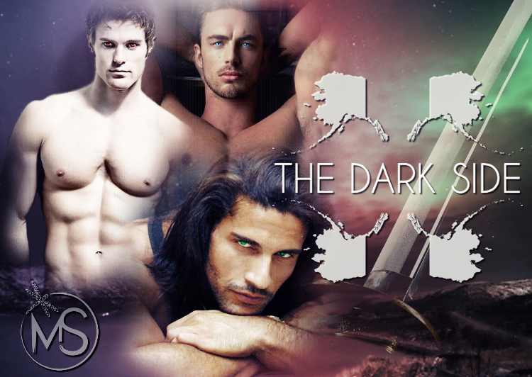 the-dark-side-serie-banner-marion-seals-author