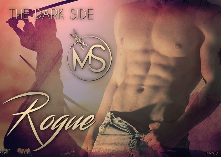 cospirazione-the-dark-side-serie-rogue-marion-seals-author