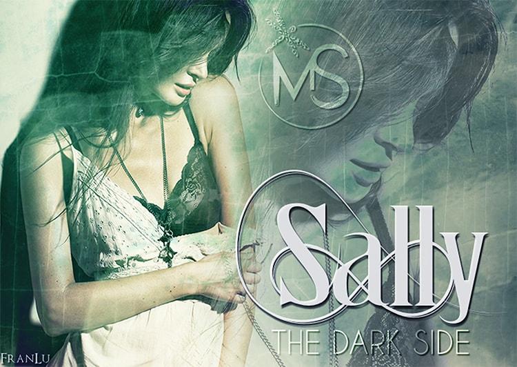dominio-the-dark-side-serie-sally-marion-seals-author