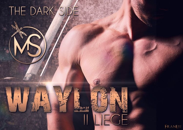 dominio-the-dark-side-serie-waylon-marion-seals-author